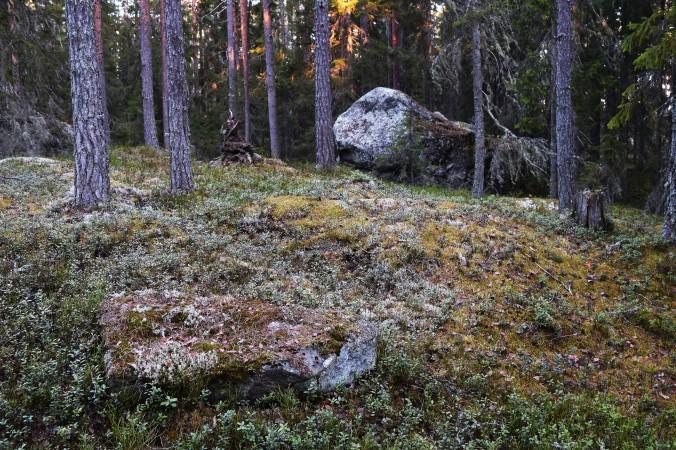 Tjuvberget vilstenen_redigerad-1