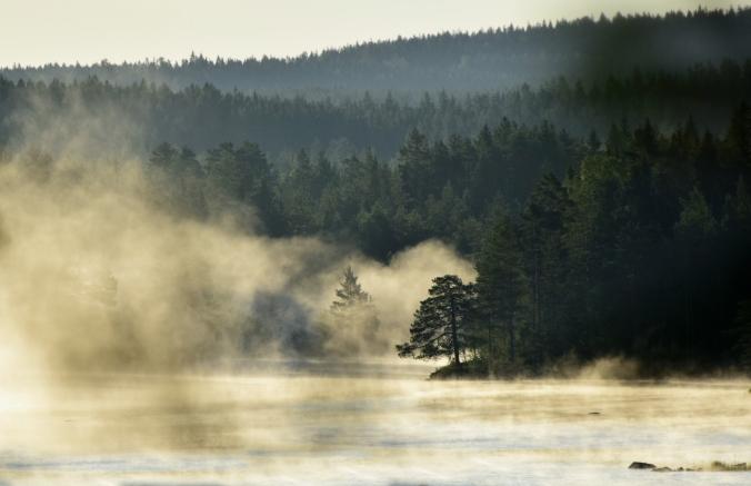 dimma finnskogssjö-1